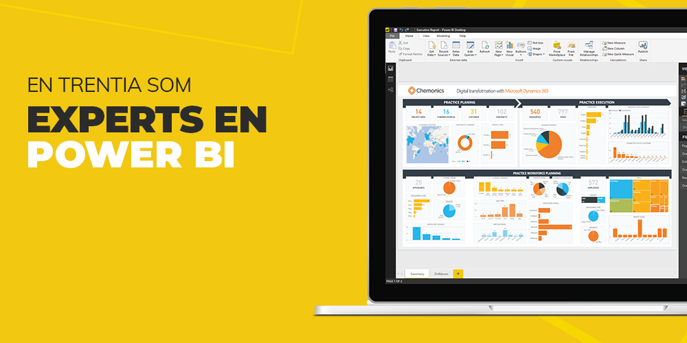 En Trentia som experts en Power BI