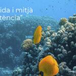 Oceans i Tecnologia com a aliada