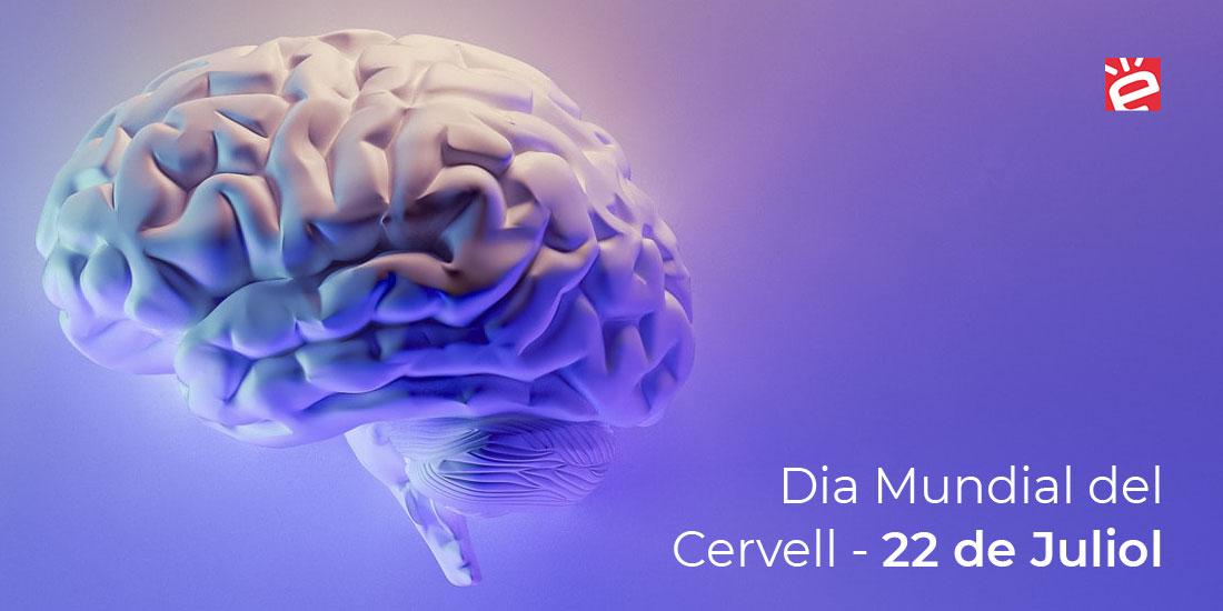 La Salut del nostre cervell: líders sans